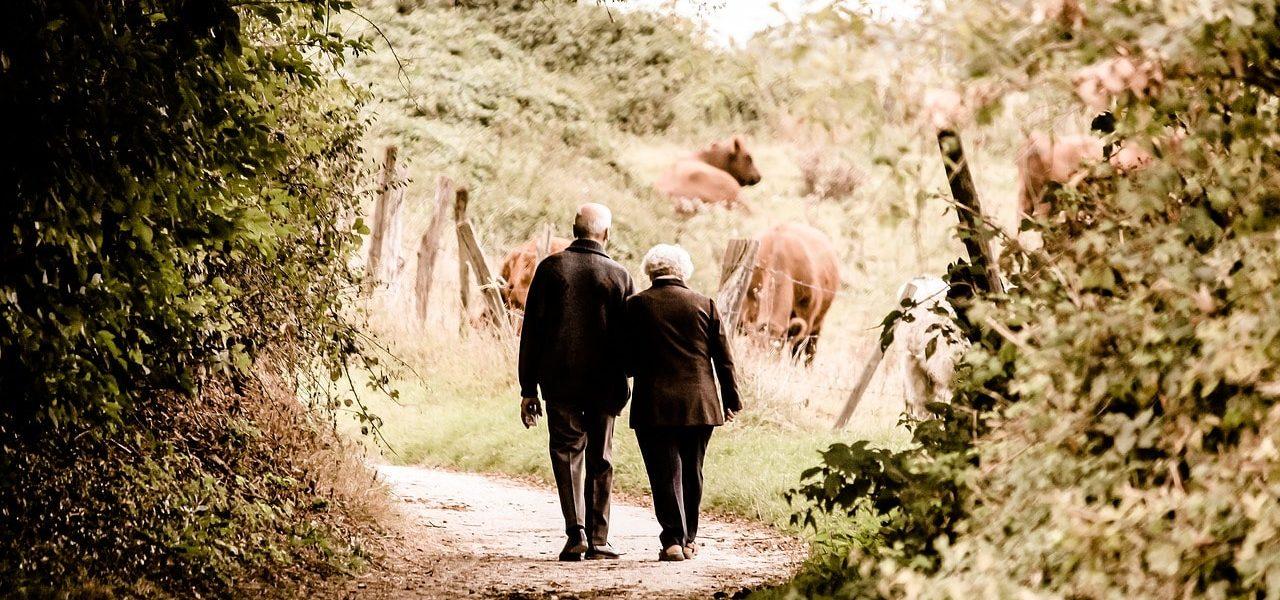 advocaten-familie-erfrecht-pensioenverdeling-bij-echtscheiding