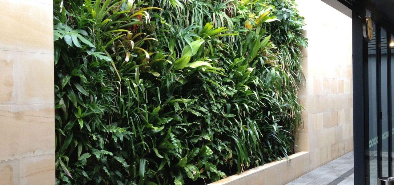 plantenwand op kantoor