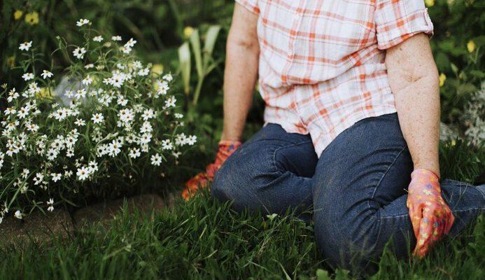 Tips voor het inrichten van je nieuwe tuin